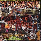Yeah Yeah Yeahs- Fever to tell